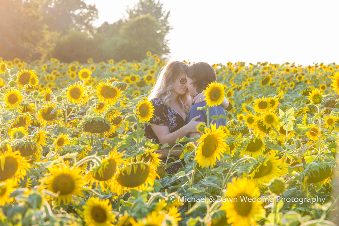 picture of couple holding each other in a sunflower field