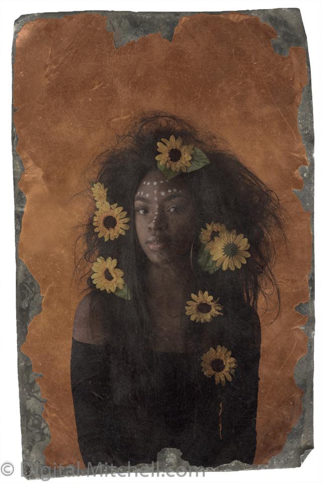 53-Onesty -Sunflowers-Edit