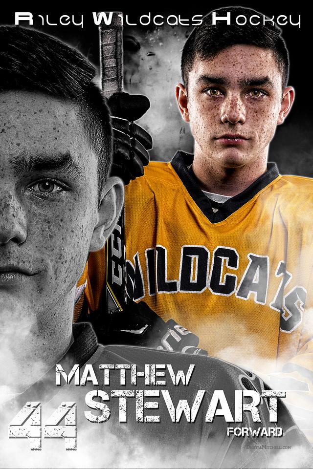 44-Matthew Stewart 40x60