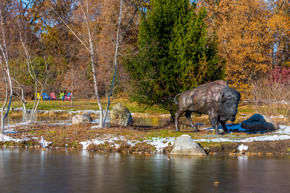 Image of a Bronze Bison sculpture