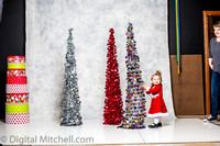 176-X-Mas Little Girls Session