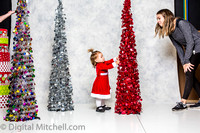 179-X-Mas Little Girls Session