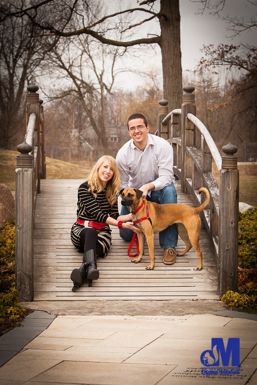 Photograph Engagement by bridge with Dog