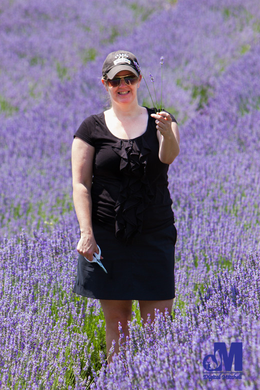 photograph Dawn holding purple lavender flowers