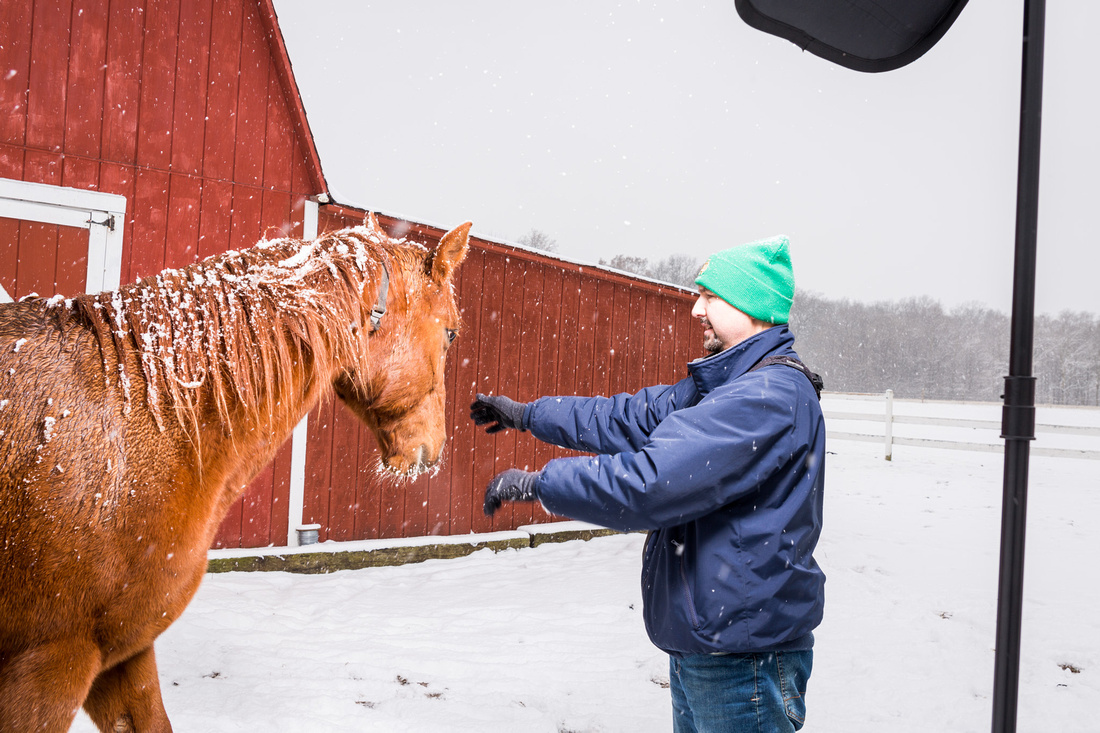 picture of horse getting in the way of the photo shoot