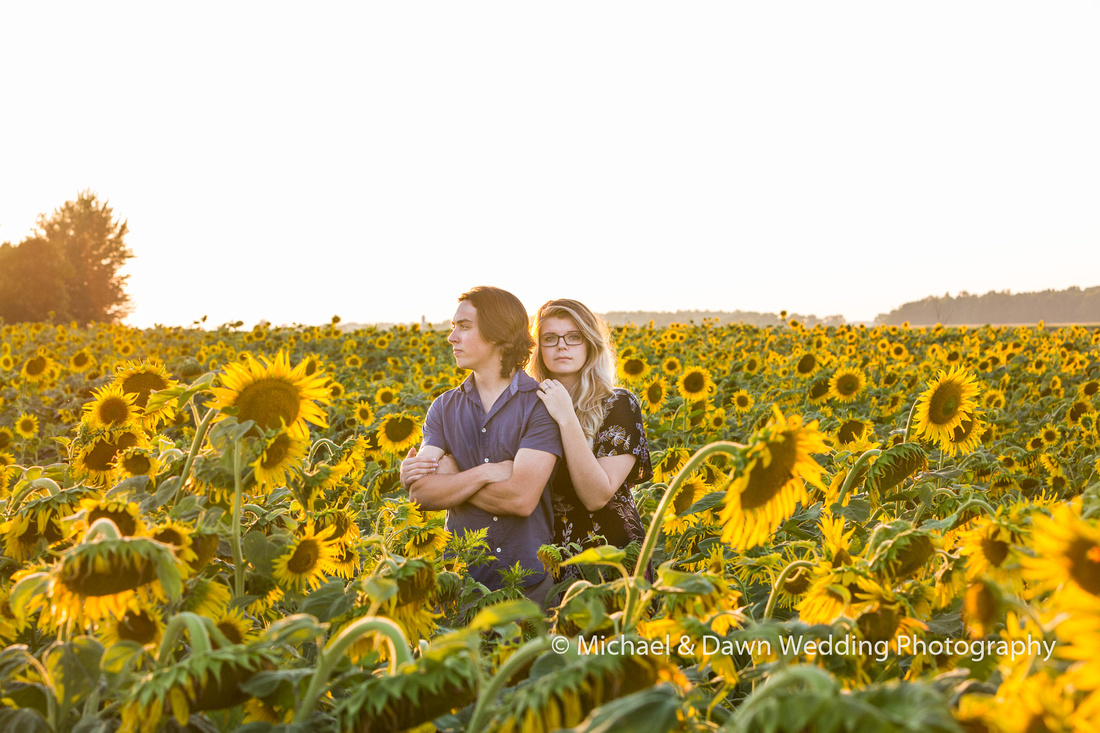 photograph of two people in sunflower filed getting engaged