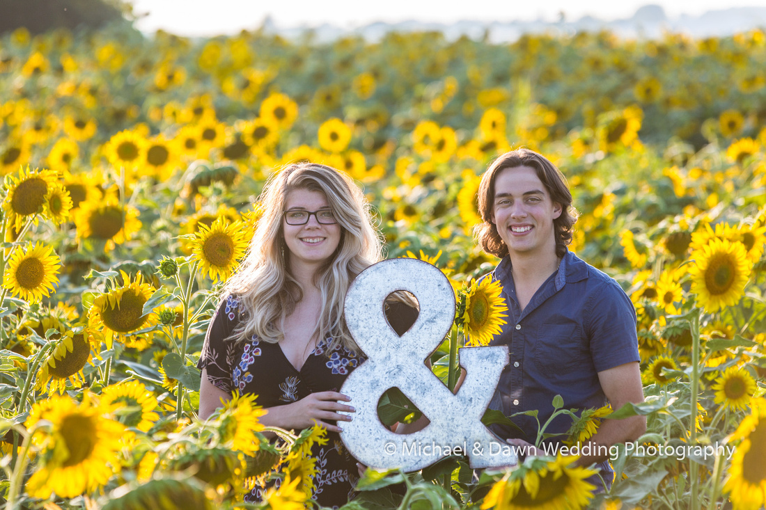Image of couple holding ampersand sign in the middle of a sunflower field
