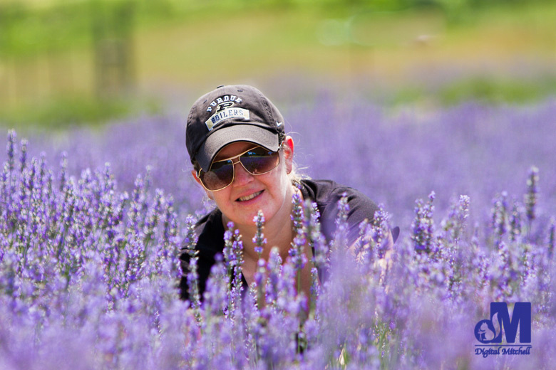 photograph of Dawn in a field of purple lavender flowers